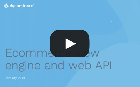 Ecommerce view engine and web API